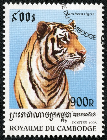 CAMBODIA - CIRCA 1998  A stamp printed in Cambodia shows panthera tigris, circa 1998