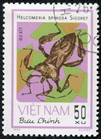 squash bug: VIETNAM - CIRCA 1982  A Stamp printed in VIETNAM shows the image of a Squash Bug with the description  Helcomeria spinosa Sigoret  from the series  Chinch Bugs , circa 1982