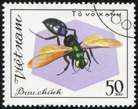 aculeata: VIETNAM - CIRCA 1982  A stamp printed in Vietnam shows Insect To vo xanh, circa 1982 Stock Photo