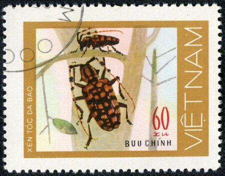 VIETNAM - CIRCA 1981  stamp printed in VIETNAM, shows mottled red beetles woodcutters, 60 coins, about 1981