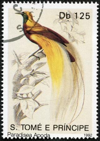 principe: S Tom� y Pr�ncipe-alrededor de 1992 Un sello impreso en S Tom� y Pr�ncipe muestra de aves del para�so, alrededor del a�o 1992 Foto de archivo