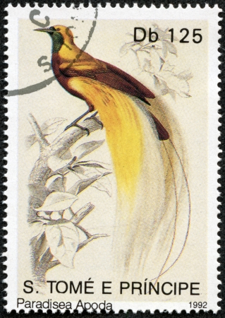 S  TOME E PRINCIPE- CIRCA 1992  A Stamp printed in S  TOME E PRINCIPE shows bird of paradise, circa 1992 photo
