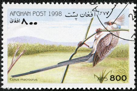afghan: AFGHAN - CIRCA 1998  A stamp printed in Afghan shows Colius macrourus, circa 1998