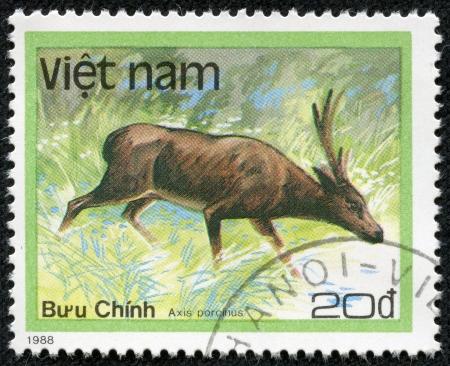 bush hog: VIETNAM - alrededor de 1988 Un sello impreso en Vietnam muestra ciervos del cerdo o porcinus eje, serie, alrededor de 1988