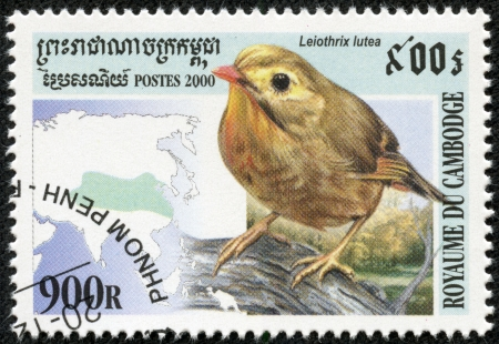 red billed leiothrix: CAMBODIA - CIRCA 2000  A stamp printed Cambodia shows bird leiothrix lutea , circa 2000 Editorial