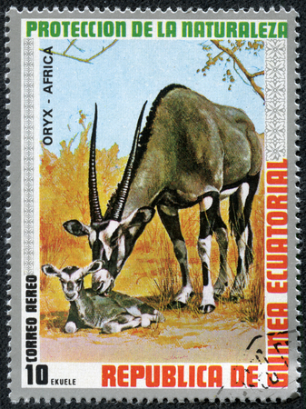 postman of the desert: GUINEA - CIRCA 1976  A stamp printed by GUINEA shows Oryx, series animals, circa 1976