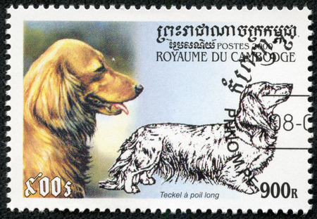 CAMBODIA - CIRCA 2000  stamp printed by Cambodia, shows dog, circa 2000