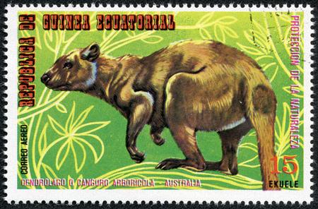 EQUATORIAL GUINEA - CIRCA 1974  Stamp printed in Guinea dedicated to endangered animals, shows kangaroo, Australia, circa 1974