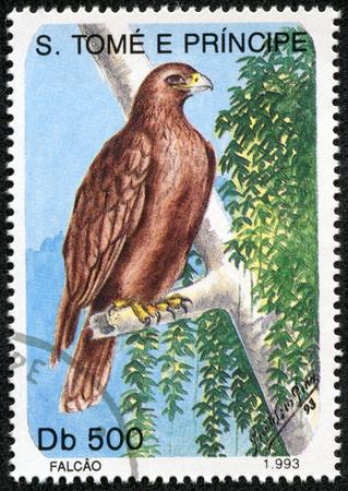 principe: S Tom� y Pr�ncipe-alrededor de 1993 Un sello impreso en S Tom� y Pr�ncipe muestra de aves, alrededor de 1993