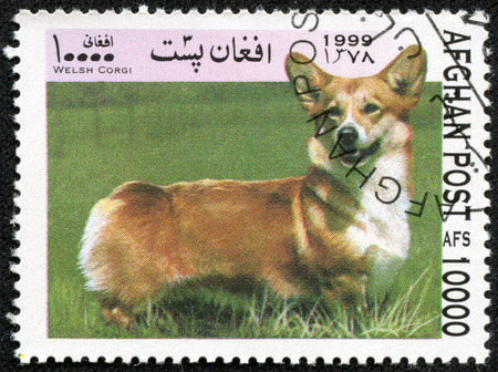 AFGHANISTAN - CIRCA 1999  A stamp printed in Afghanistan shows dog welsh corgi, series, circa 1999 Stock Photo - 27652666
