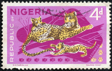 NIGERIA - CIRCA 1973  Postage stamp printed in Nigeria, shows cheetah in the Yankari National Park, circa 1973 photo