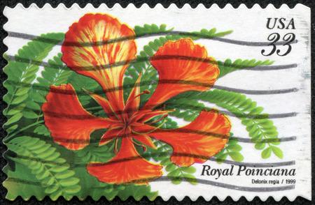 flamboyant: USA - CIRCA 1999  A Stamp printed in USA shows the Royal Poinciana  Delonix regia , Tropical Flowers series, circa 1999