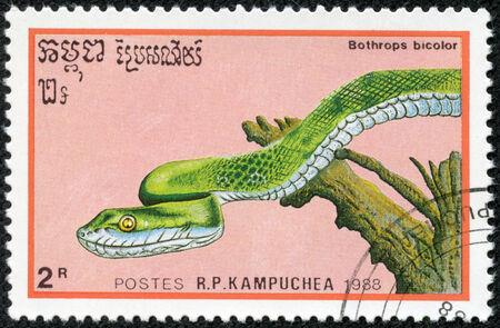 CAMBODIA - CIRCA 1988: A stamp printed in Cambodia shows a bright green Guatemalan Palm Pit Viper, Bothrops bicolor Also known as the Guatemalan Tree Viper, circa 1988..
