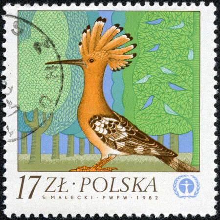 POLAND - CIRCA 1982  A stamp printed in POLAND shows bird, circa 1982