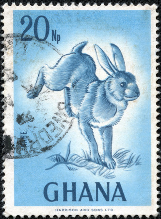 wilding: GHANA - CIRCA 1974. A vintage canceled postage stamp with wild rabbit illustration, circa 1974