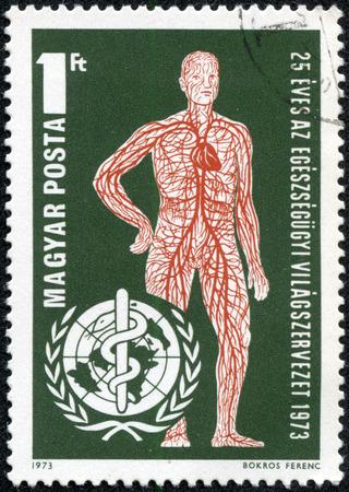 HUNGARY - CIRCA 1973  Vascular System and WHO Emblem, circa 1973