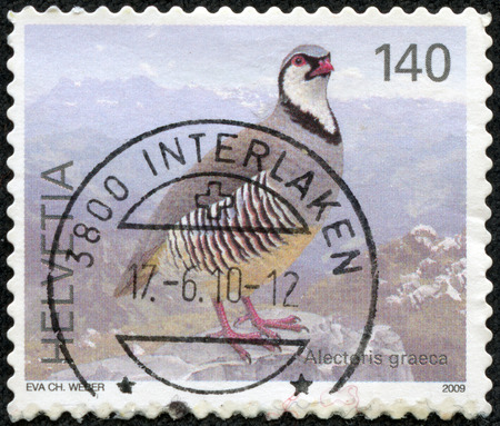 helvetia: HELVETIA  SWITZERLAND  - CIRCA 2009  Stamp printed in Switzerland shows Pheasant with the designation  Alectoris graeca , circa 2009
