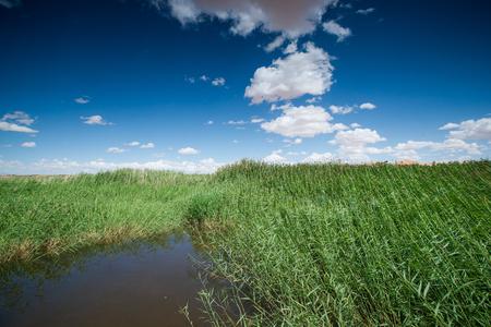 湖の風景 写真素材