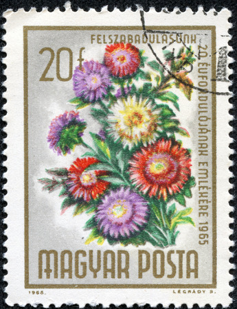 HUNGARY - CIRCA 1965: stamp printed by Hungary, shows flower bouquet, circa 1965 photo