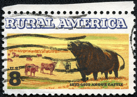 mailmen: UNITED STATES OF AMERICA - CIRCA 1973: a stamp printed in the USA shows Angus and Longhorn Cattle, Centenary of Introduction of Angus Cattle to US, circa 1973