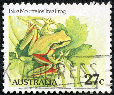 blue mountains tree frog: AUSTRALIA - CIRCA 1982: A Cancelled postage stamp from Australia illustrating Australian Reptiles, issued in 1982.