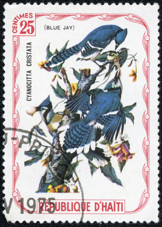 atilde: HAITI - CIRCA 1975: A stamp printed in Haiti shows Blue Jay, circa 1975 Stock Photo