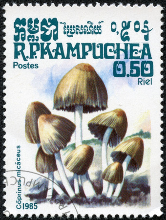 glistening: CAMBOYA - CIRCA 1985: sello impreso en Kampuchea muestra Coprinus micaceus (Coprinellus, mica, brillante o reluciente tapa de tinta) de la serie de setas, Scott 569 A126 50c azul beige, alrededor de 1985