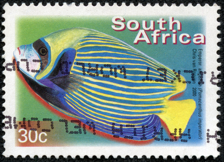 rsa: SOUTH AFRICA - CIRCA 2000: A stamp printed in RSA shows emperor angelfish, Pomacanthus imperator, circa 2000