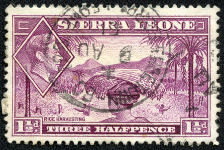 1 person: SIERRA LEONE - CIRCA 1940: Depicting indigenous person and an inset of King George VI, with inscription  Rice harvesting , and a face value of 1 12 pence, circa 1940