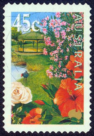 oleander: AUSTRALIA - CIRCA 2000: stamp printed by Australia, shows flowers in the garden, circa 2000 Stock Photo
