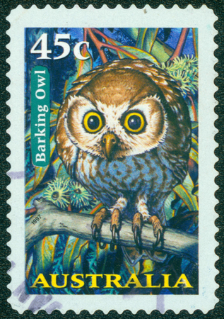 nocturnal: AUSTRALIA - CIRCA 1997: a stamp printed in the Australia shows Barking Owl, Ninox Connivens, Nocturnal Bird, circa 1997 Stock Photo