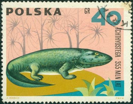 ichthyology: POLAND - CIRCA 1966: A stamp printed in Poland shows Ichthyostega from the series Dinosaurs, Prehistoric Vertebrates, circa 1966