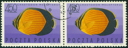 "butterflyfish: POLAND - CIRCA 1967: post stamp printed in Poland shows Black-eye butterflyfish (Chaetodon melapterus), series \ ""Exotic fish \"", circa 1967"