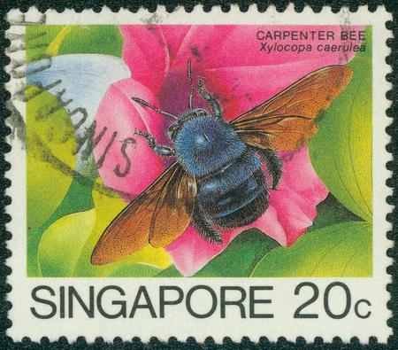 Sello impreso en Singapur muestra carpintero abeja