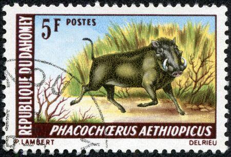 CHONGQING, CHINA - May 9, 2014:stamp printed by Dahomey, shows Desert Warthog , circa 1999