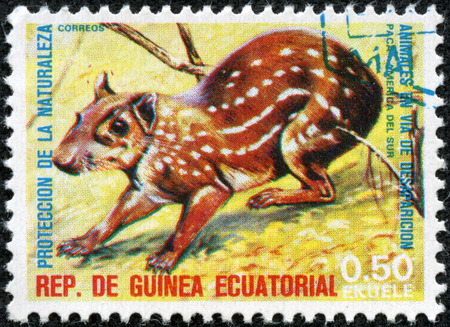 CHONGQING, CHINA - May 10, 2014:Stamp printed in Guinea dedicated to endangered animals, shows Lowland paca, South America, circa 1974 Stock Photo