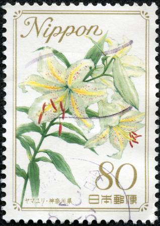 CHONGQING, CHINA - May 11, 2014:A stamp printed in Japan shows Gold-banded Lily Lilium auratum, series Flower, circa 1981 Editöryel