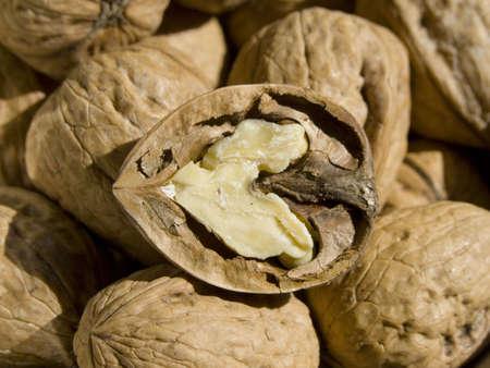 Half nut over nuts 版權商用圖片