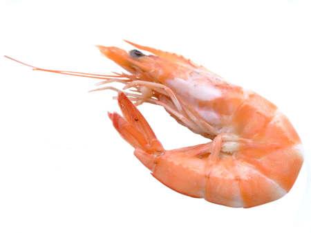 Single shrimp over white background Stock Photo