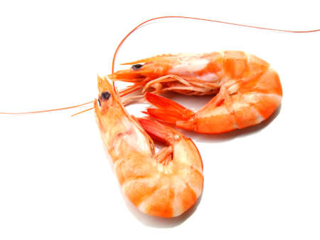 crustaceans: Two shrimps over white background Stock Photo