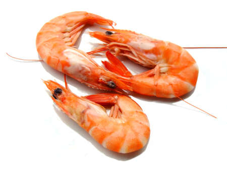 Three shrimps over white background Stock Photo
