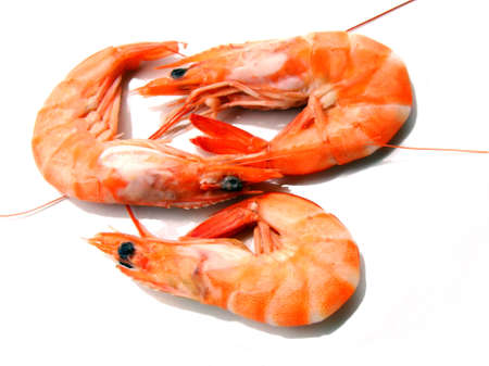 crustaceans: Three shrimps over white background Stock Photo