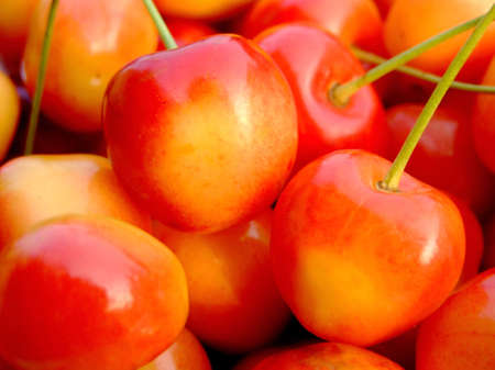 close-up of ripe double color cherries Stock Photo