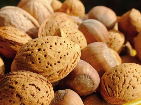 Close-up of mixed nuts photo
