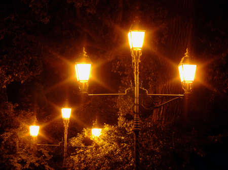 Street lamps in the park at night