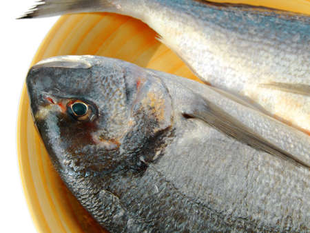 gilthead bream: Close-up of a gilthead bream ready to be cooked