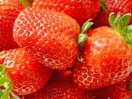 Lots of ripe strawberries