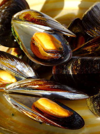 Close-up of cooked mussels