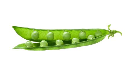 pea pod: opened pea pod Stock Photo