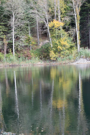appennino: Reflections in the mountains lake in autumn